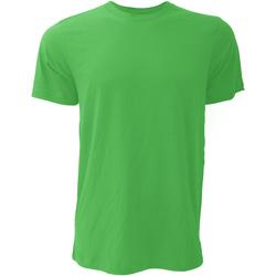 Kleidung Herren T-Shirts Bella + Canvas CA3001 Kellygrün