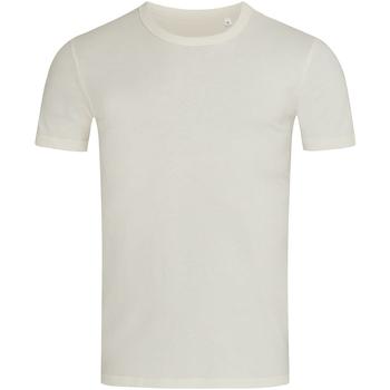 Kleidung Herren T-Shirts Stedman Stars Morgan Cremeweiß