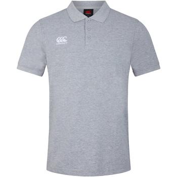 Kleidung Herren Polohemden Canterbury CN220 Grau meliert