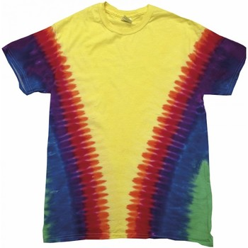 Kleidung T-Shirts Colortone TD05M Regenbogen V