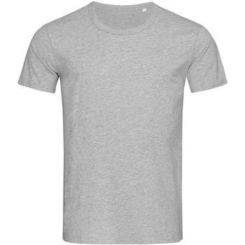 Kleidung Herren T-Shirts Stedman Stars Stars Grau meliert