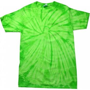 Kleidung Kinder T-Shirts Colortone Spider Spinne Limette