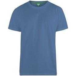 Kleidung Herren T-Shirts Duke  Petrol