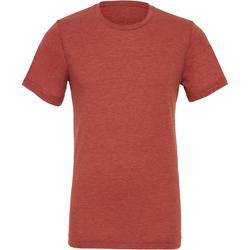 Kleidung Herren T-Shirts Bella + Canvas CA3413 Ton Triblend