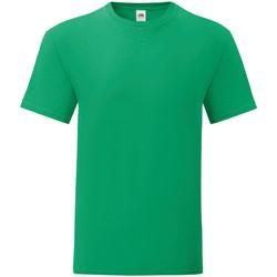Kleidung Herren T-Shirts Fruit Of The Loom 61430 Kellygrün