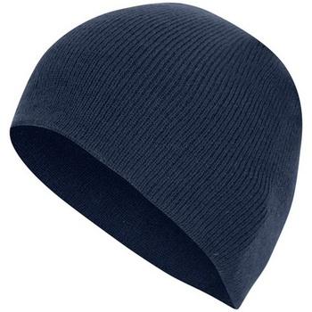 Accessoires Mütze Absolute Apparel  Marineblau