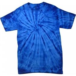 Kleidung Kinder T-Shirts Colortone Spider Spinne Königsblau