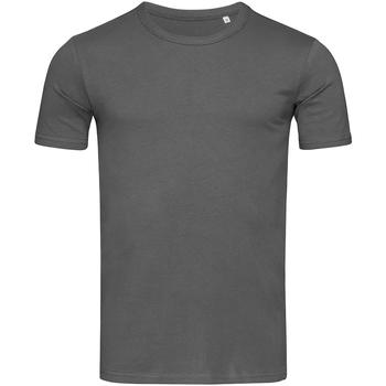 Kleidung Herren T-Shirts Stedman Stars Morgan Schiefergrau