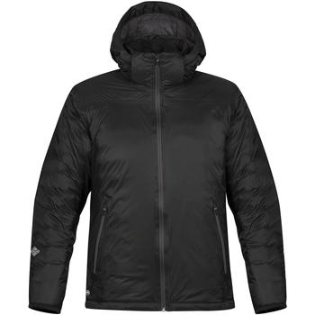 Kleidung Herren Daunenjacken Stormtech Black Ice Schwarz/Delfin