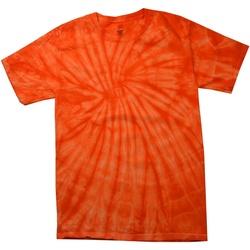 Kleidung Kinder T-Shirts Colortone Spider Spinne Orange
