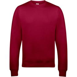 Kleidung Herren Sweatshirts Awdis JH030 Chillirot