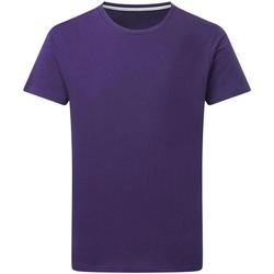 Kleidung Herren T-Shirts Sg Perfect Violett