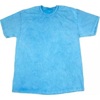 Kleidung Herren T-Shirts Colortone Mineral Babyblau