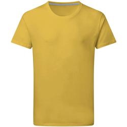 Kleidung Herren T-Shirts Sg Perfect Sonnenblumengelb