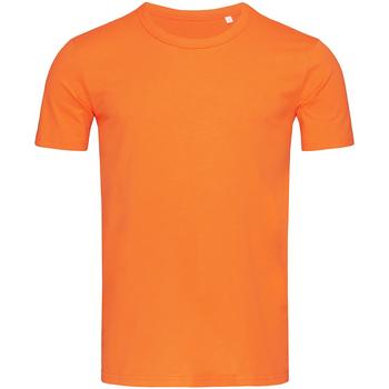Kleidung Herren T-Shirts Stedman Stars Morgan Kürbis