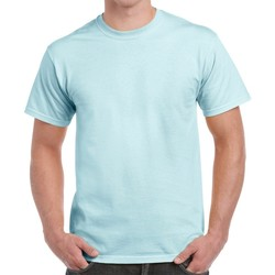 Kleidung Herren T-Shirts Gildan H000 Chambray