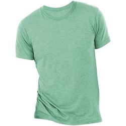 Kleidung Herren T-Shirts Bella + Canvas CA3413 Seegrün Triblend