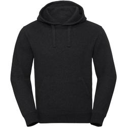 Kleidung Sweatshirts Russell R261M Grau