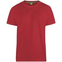 Kleidung Herren T-Shirts Duke Flyers-2 Rot