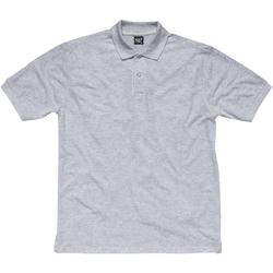 Kleidung Mädchen Polohemden Sg SG50K Oxford