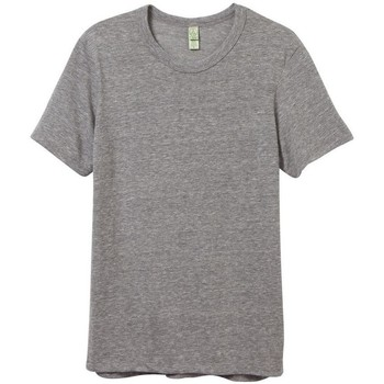 Kleidung Herren T-Shirts Alternative Apparel AT001 Eco-Grau