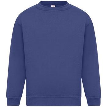 Kleidung Herren Sweatshirts Absolute Apparel Sterling Königsblau