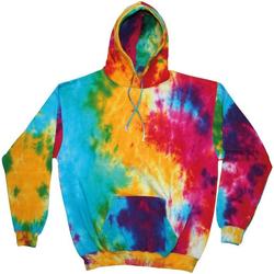 Kleidung Herren Sweatshirts Colortone TD31M Bunter Regenbogen