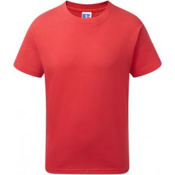 Kleidung Kinder T-Shirts Russell 155B Rot