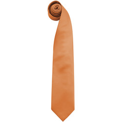 Kleidung Herren Krawatte und Accessoires Premier PR765 Orange