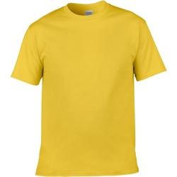 Kleidung Herren T-Shirts Gildan Soft-Style Gänseblümchen