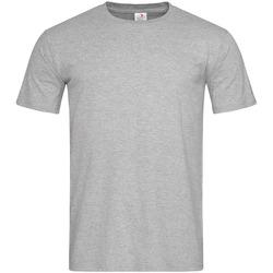 Kleidung Herren T-Shirts Stedman  Grau meliert