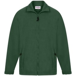Kleidung Herren Fleecepullover Absolute Apparel  Flaschengrün