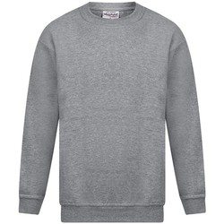 Kleidung Herren Sweatshirts Absolute Apparel Magnum Sport Grau