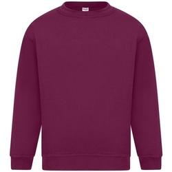 Kleidung Herren Sweatshirts Absolute Apparel Sterling Burgunder