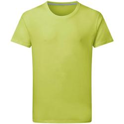 Kleidung Herren T-Shirts Sg Perfect Limette
