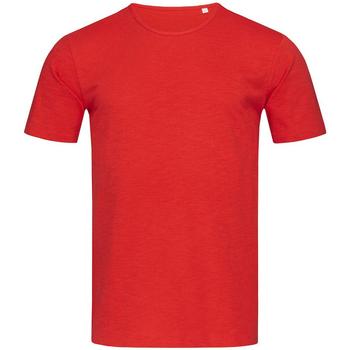 Kleidung Herren T-Shirts Stedman Stars Shawn Purpurrot