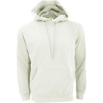Kleidung Herren Sweatshirts Sg SG27 Birke