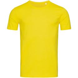 Kleidung Herren T-Shirts Stedman Stars Morgan Gänseblümchen Gelb