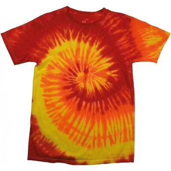 Kleidung Damen T-Shirts Colortone Rainbow Blaze