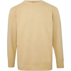 Kleidung Herren Sweatshirts Comfort Colors CO040 Multicolor