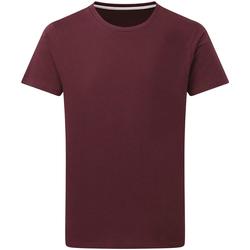 Kleidung Herren T-Shirts Sg Perfect Burgunder