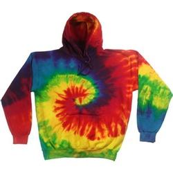 Kleidung Herren Sweatshirts Colortone TD31M Regenbogen