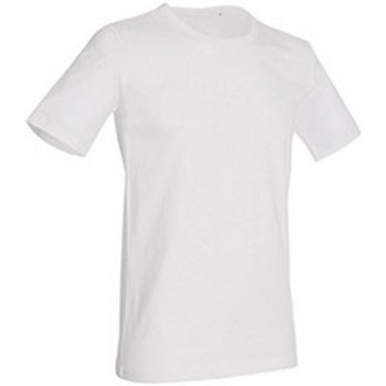 Kleidung Herren T-Shirts Stedman Stars Morgan Weiß