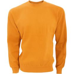 Kleidung Herren Sweatshirts Sg SG20 Kräftiges Orange