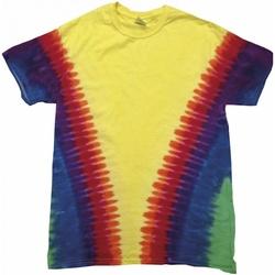 Kleidung Kinder T-Shirts Colortone TD05B Rainbow Vee