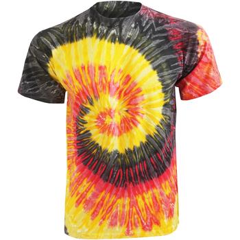 Kleidung Damen T-Shirts Colortone Rainbow Kingston