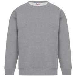 Kleidung Herren Sweatshirts Absolute Apparel Sterling Sport Grau
