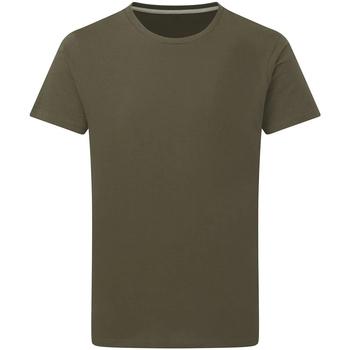 Kleidung Herren T-Shirts Sg Perfect Militärgrün