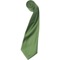 Kleidung Herren Krawatte und Accessoires Premier Satin Salbeigrün