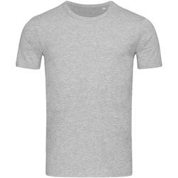 Kleidung Herren T-Shirts Stedman Stars Morgan Grau meliert